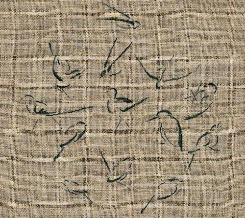 http://sd3.archive-host.com/membres/images/1336321151/bestioles/oiseaux/silhouette_B.jpg