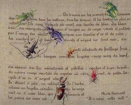 http://sd3.archive-host.com/membres/images/1336321151/catablogue/vignettes/vignette_Insectes-Rouanet.jpg