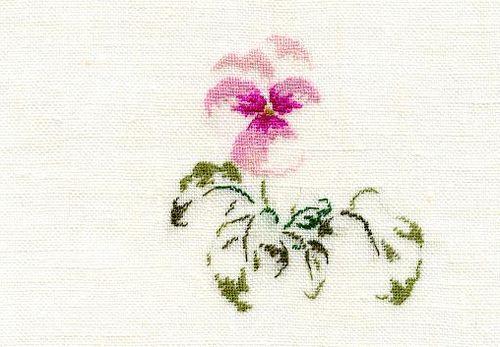 http://sd3.archive-host.com/membres/images/1336321151/fleurs/Violas/16_rose/rose_16-gp.jpg