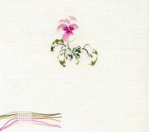 http://sd3.archive-host.com/membres/images/1336321151/fleurs/Violas/16_rose/rose_16.jpg