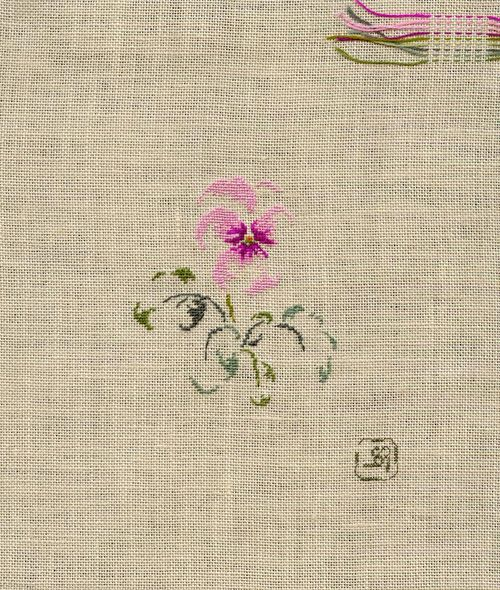 http://sd3.archive-host.com/membres/images/1336321151/fleurs/Violas/Fatirose/cornuta_fati.jpg