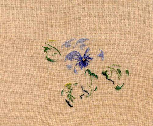 http://sd3.archive-host.com/membres/images/1336321151/fleurs/Violas/bleue_gaze/pensee_bleue-B.jpg