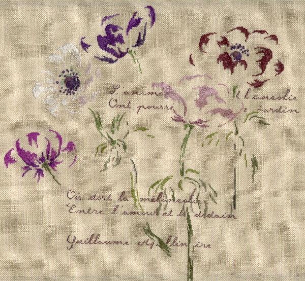 http://sd3.archive-host.com/membres/images/1336321151/fleurs/anemones/anemones_L6000.jpg