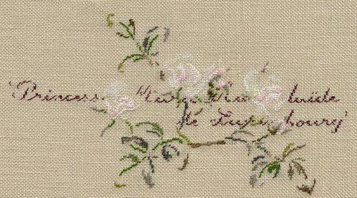 http://sd3.archive-host.com/membres/images/1336321151/fleurs/roses/MAdL/MAdL-1.jpg