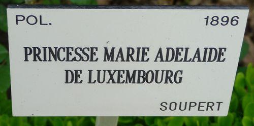 http://sd3.archive-host.com/membres/images/1336321151/fleurs/roses/MAdL/MAdL-Label.jpg