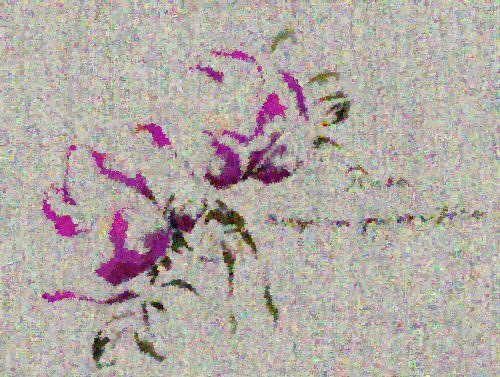 http://sd3.archive-host.com/membres/images/1336321151/fleurs/roses/pomifera/rugosa_pomifera-huile.jpg