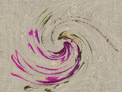 http://sd3.archive-host.com/membres/images/1336321151/fleurs/roses/pomifera/rugosa_pomifera-spirale.jpg